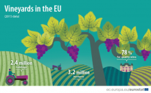 Vineyards in the EU - statistics