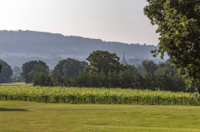 WELSH WINERY ANCRE HILL ON SALE FOR £15M