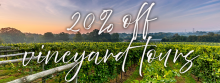 Experience our vineyard