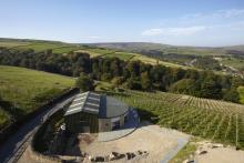 Holmfirth Vineyard