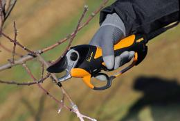 Pellenc Vinion Pruning Shears