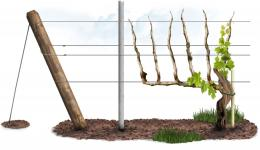 Posts, wire, Anchors