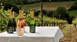 Coates & Seely - Wooldings Vineyard
