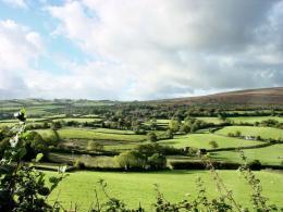Dunkery Vineyard - Exmoor
