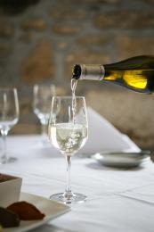 Knightor Winery - Portscatho Vineyard