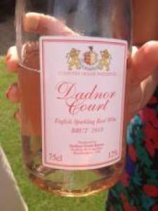 Dadnor Court Vineyard