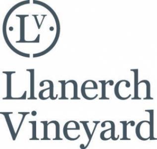 Llanerch Vineyard
